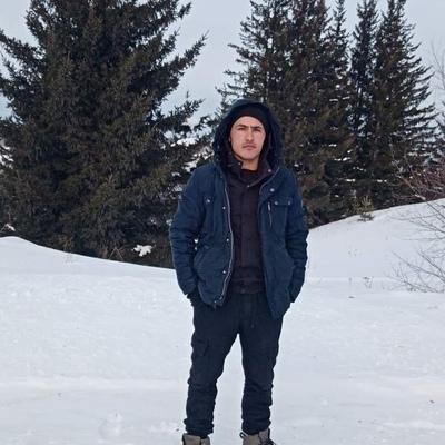 Саша, 24, Koshurnikovo