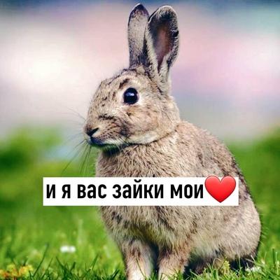 Витя Матвеев