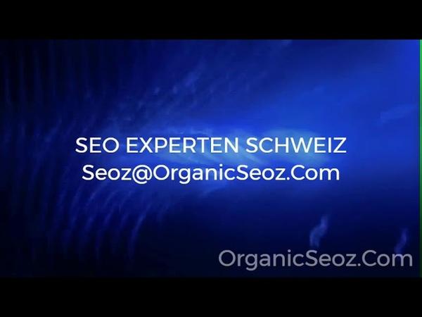 Seo Agentur Schweiz ‑ Google Facebook Youtube Twitter On Offpage SEO Ch