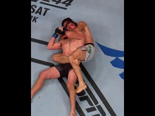 ТОП-5 лучших мастеров самбишенов в UFC