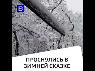 Проснулись в зимней сказке