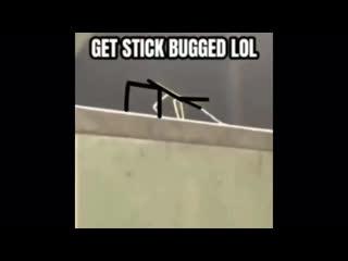 Очень познавательное видео.