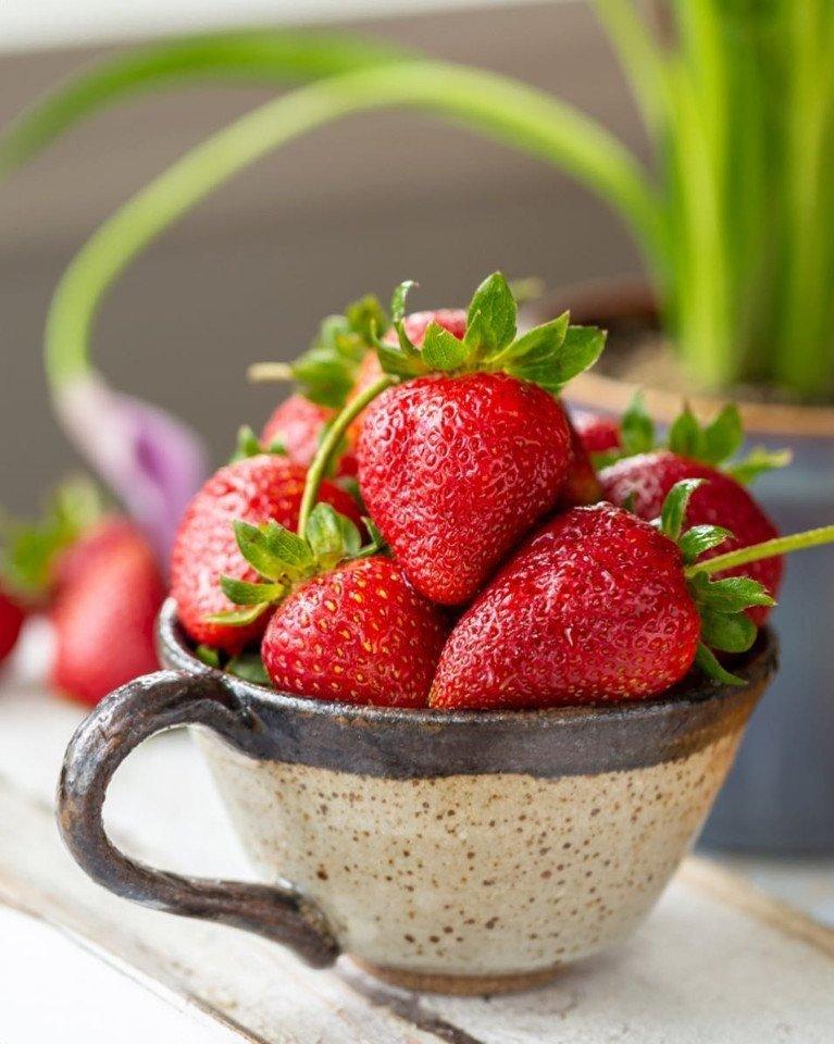 Моя любимая ягодка! А у вас какая?
