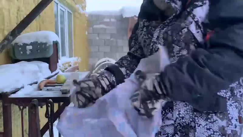 Наполовину всерьез в Якутии 53С Любые фрукты можно использовать как молоток для забивания гвоздей 21 02 20